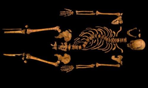 Skeleton ID'd as Britain's Richard III