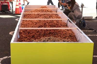 Japanese festival cooks up world's largest serving of fried chicken