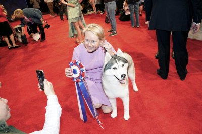 Siberian Husky Nick named Best in Show at the 'Beverly Hills Dog Show'