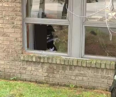 Deer crashes through window into accounting office