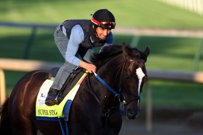 Meet the 19 horses racing in Saturday's Kentucky Derby