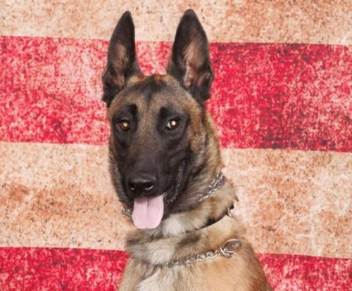 California police dog dies when air conditioning stops in car
