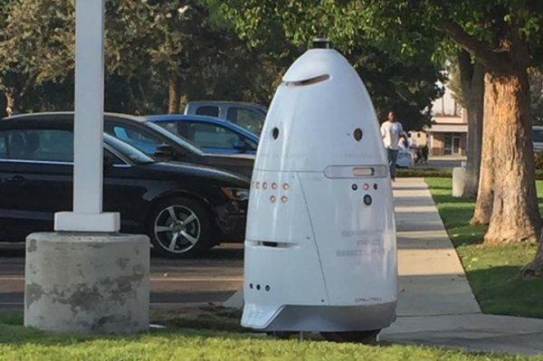 Watch Security Robot Patrols Parking Lot At California