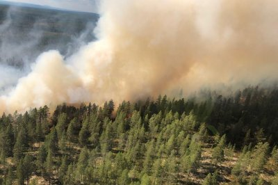 Efforts to battle Swedish wildfire hampered by undetonated explosives