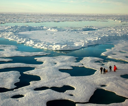 Eastern, High Arctic regain sea ice during cold winter