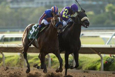 Enable, Maximum Security, United star in weekend horse racing