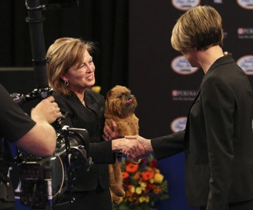 Newton the Brussels Griffon named top dog at the National Dog Show in Philly