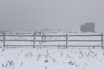 Fall blizzard hits Great Plains before harvest, burying crops