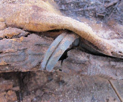 Egyptian culture minister disputes million-mummy cemetery claim