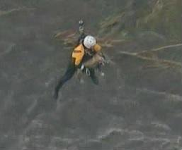 Firefighters rescue dog from rain-swollen L.A. River