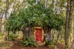 Winnie-the-Pooh's cottage available for rental stays in England