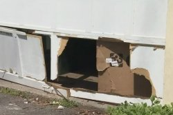 Bear rips hole in Connecticut family's garage door