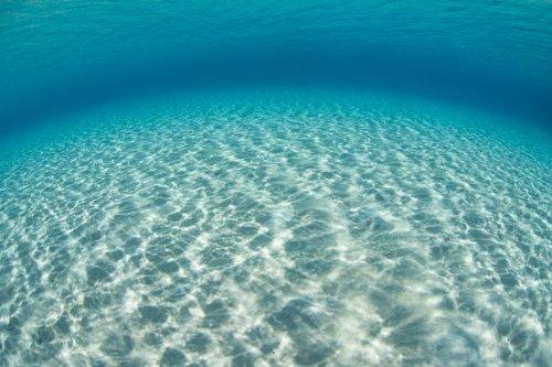 Study reveals new molecular properties of water