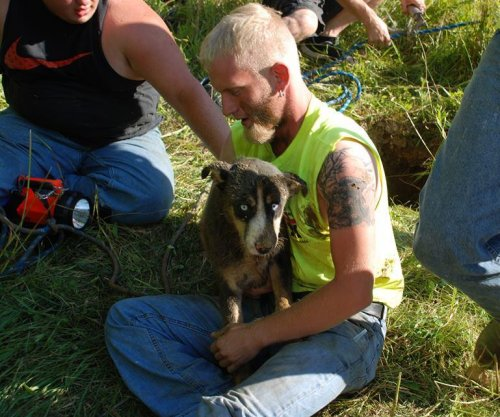 Dog rescued from 30-foot sinkhole in Pennsylvania