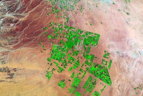 Internationally traded crops are shrinking globe's underground aquifers