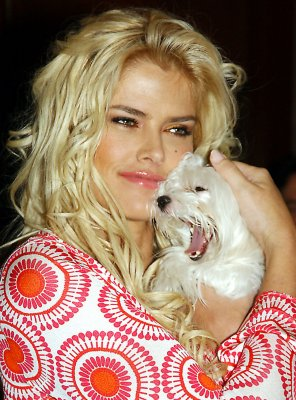 Anna Nicole Smith opera in the works