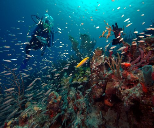 Marine reserves are essential, but increasingly stressed