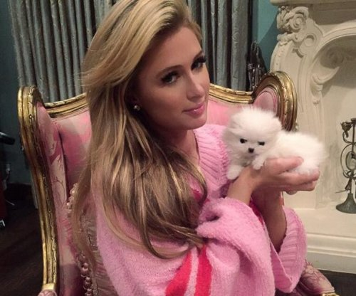Paris Hilton may hire nanny for new Pomeranian puppy