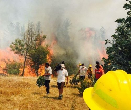 Forest fires in Chile kill 3, scorch 500 square miles