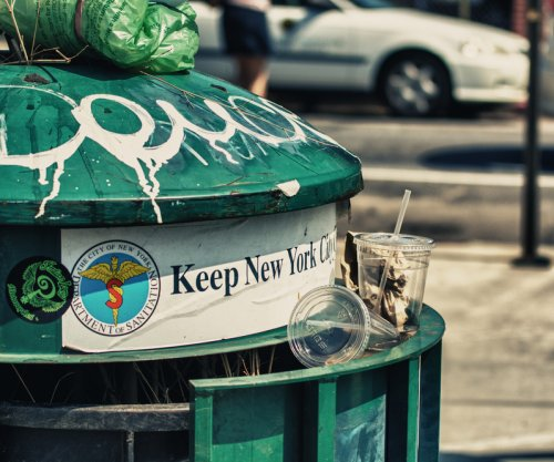 Street cleaners in New York have help from insect garbage-munchers