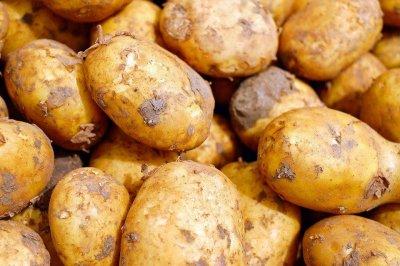 Lottery-winning farmer shares potatoes with people in coronavirus isolation