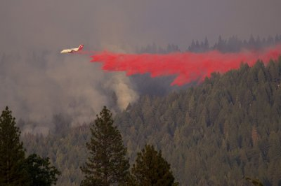 , Caldor Fire prompts evacuations for south Lake Tahoe, Forex-News, Forex-News
