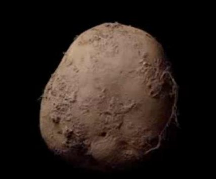 Irish photographer sells potato portrait for $1.08M