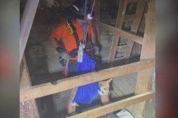 Arizona dog rescued from bottom of mine shaft