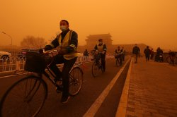 China proposes cooperation with Mongolia on seasonal dust storms