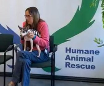 Lost dog reunited with owner 12 years later, 1,100 miles away in Pittsburgh