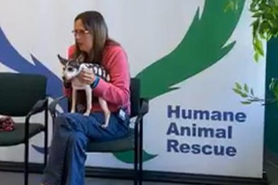 Lost dog reunited with owner 12 years later, 1,000 miles away in Pittsburgh
