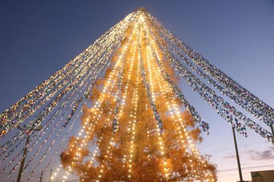 Christmas tree with 51,626 notes attached sets Guinness record in Japan