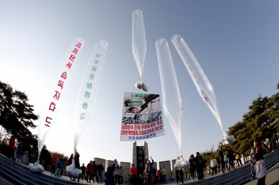 Ex-South Korea official backs ban on anti-Pyongyang leaflets