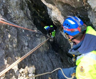 Dog rescued from deep coastal chasm