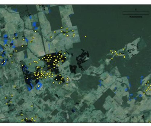 Study: Deforestation in Amazon going undetected by Brazilian monitors