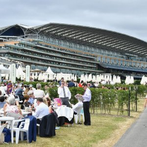 Royal Ascot: Poet's Word makes impressive run