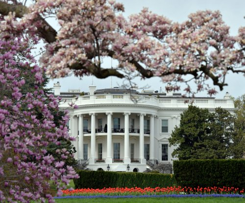 White House hires first openly transgender staff member
