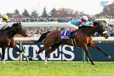 Almond Eye in Japan, Exultant in Hong Kong top horse racing menu
