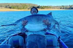 Tennessee man catches, releases massive paddlefish