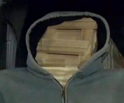 Long Island man busted for using wooden dummy in carpool lane