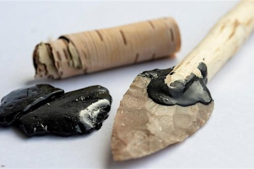 Tar-covered flint tool suggests Neanderthals were surprisingly innovative