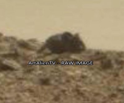 YouTube video claims to capture mouse on Mars