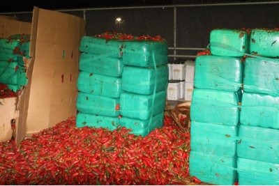 CBP seizes 4 tons of marijuana hidden in shipment of jalapeños