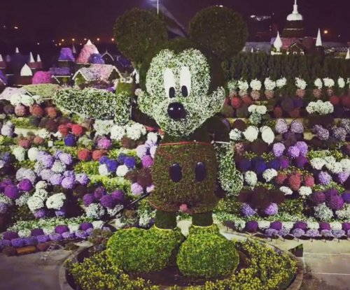Massive Mickey Mouse topiary sculpture breaks Guinness record