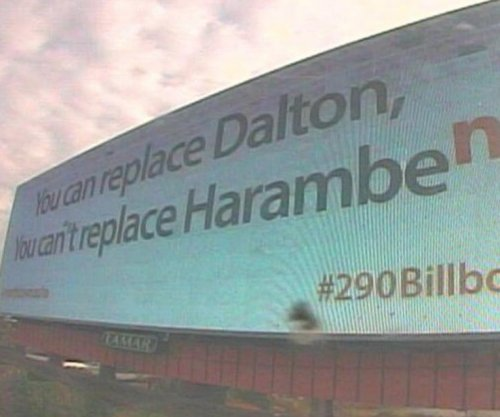 Andy Dalton: Buffalo car dealership trolls Bengals QB with Harambe billboard