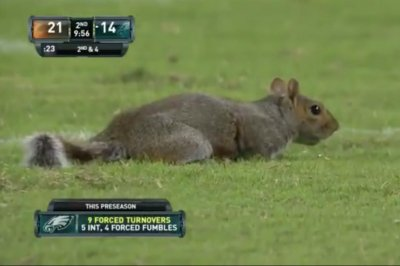 'Football squirrel' interrupts Philadelphia Eagles game