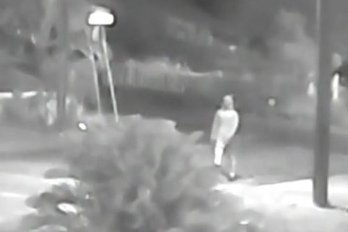 Florida police on the lookout for possible serial killer