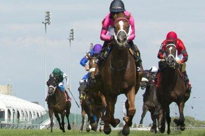 10 Breeders' Cup qualifiers, first '20 Kentucky Derby trial mark weekend horse racing