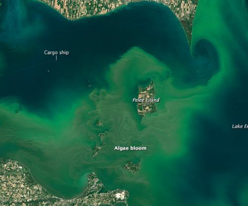 Lake Erie algal bloom predictions improved by new model and satellite data