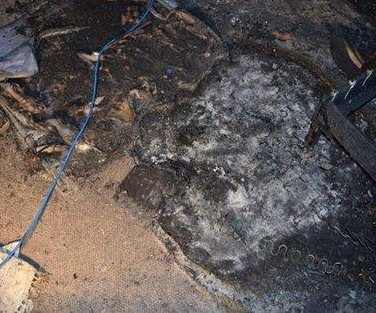 Match-chewing dog blamed for starting house fire